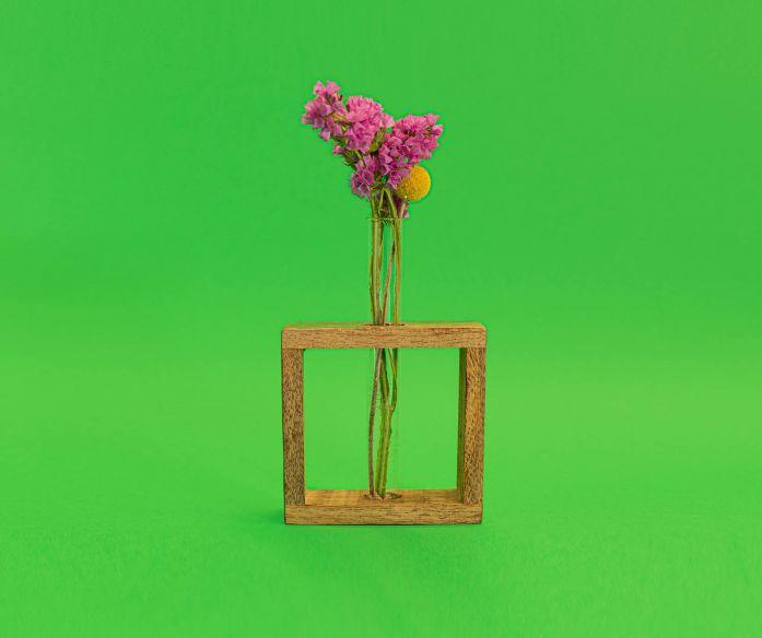 Zkumavka ve čtvercovém stojánku s květy na zaschnutí